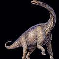 Brachiosaurus Dinosaur by Joe Tucciarone
