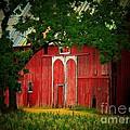 Branch Over Barn Door by Joyce Kimble Smith
