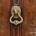 Brass Door Knocker by John Greim