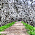 Brazos Bend Pass by Diego Re