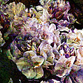 Bridal Bouquet by Barbara Berney