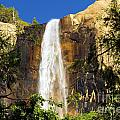Bridal Veil Falls At Yosemite by Adam Jewell