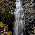 Bridal Veil Falls by Mitch Shindelbower
