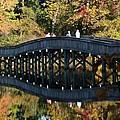 Bridge 3 by Larry Krussel