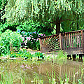 Bridge And Hydrangea by Eva Kaufman