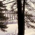 Bridge In The Fog by Mark Dodd