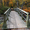 Bridge Into Autumn by Kay Novy