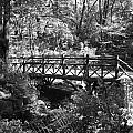 Bridge Of Centralpark In Black And White by Rob Hans