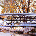 Bridge Over Icy Waters by James BO  Insogna