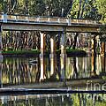 Bridge Over Ovens River 2 by Kaye Menner