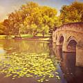 Bridge Over River by Photo - Lyn Randle