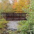 Bridge Over River by Ronald Grogan