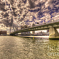 Bridge Over Rotterdam  by Rob Hawkins