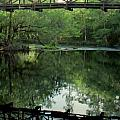 Bridge Reflections by Lynnette Johns