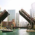 Bridge Rising by Claude Taylor