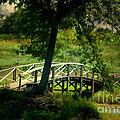 Bridge To Heaven by Peggy Franz