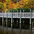 Bridge To Paradise by Scott Hervieux
