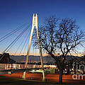 Bridge To Twilight by Gary Whitton