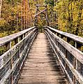 Bridging The Seasons by JC Findley