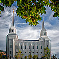 Brigham City Temple Leaves Arch by La Rae  Roberts