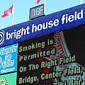 Bright House Field by Carol Christopher