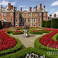 British Garden  by Adrian Evans