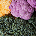 Broccoli With Yellow And Purple Cauliflower, Studio Shot by Jessica Peterson