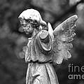 Broken Angel Bw by J M Lister