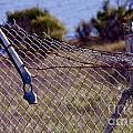 Broken Fence by Polly Villatuya