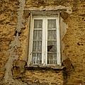 Broken Window by Lainie Wrightson