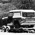 Bronco in the Snow by Lynn Davenport