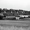 Brook Hill Dairy Farm by Jan W Faul