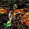 Brook Texture 162 by George Ramos