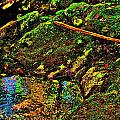Brook Texture 49 by George Ramos