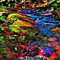 Brook Texture 52 by George Ramos