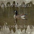 Brother Birthday Greeting Card - Canada Goose by Mother Nature