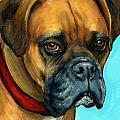 Brown Boxer On Turquoise by Dottie Dracos