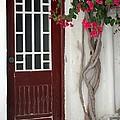 Brown Door In Greece by Sabrina L Ryan