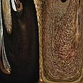 Brown Metal by Skip Nall