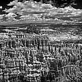 Bryce Canyon - Black And White by Larry Carr