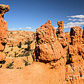 Bryce Canyon Hoodoos by Adam Jewell