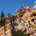 Bryce Canyon Santa Clause by Adam Jewell