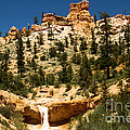 Bryce Water Canyon by Adam Jewell