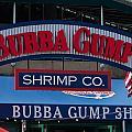 Bubba Gump by Paul Mangold