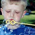 Bubble Boy by Susan Stevenson