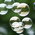 Bubbles by Judi Deziel