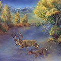 Buck And Doe Crossing River by Dawn Senior-Trask