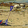 Bucket And Spade by Rob Hawkins