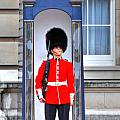 Buckingham Palace by Barry R Jones Jr