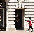 Buckingham Palace Guards by Andrew  Michael